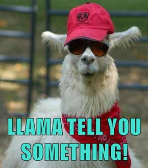 LLAMA TELL YOU SOMETHING!