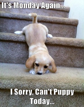 It's Monday Again...  I Sorry, Can't Puppy Today...