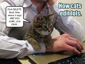 How cats edit lols.