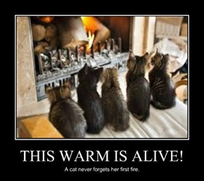 THIS WARM IS ALIVE!
