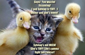 Guys!  Yoo wuzzint lissuning!  I sed Sylviag is TUFF - I nebur sed she's meen!          Sylviag's not MEEN!  She's TUFF! She's gonna fight teh cancer!