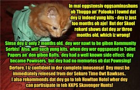 """KKPS 2015: Dr. Tinycat completely clears Thuggo an' Palooka of all nawtiness and gilts in teh Pownser affair and also in setting fire to teh Discreet Rest Home! """"Dey iz completely innosense"""" sez Dr. Tinycat!"""