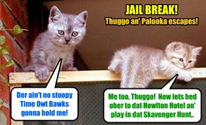 KKPS 2015: Before dey wer completely cleered by Dr. Tinycat ob burning down teh Discreet Rest Home an' ob Pownsing on Skolars, Thuggo an' Palooka wer seen escaping from der Sekure Time Owt Bawkses!