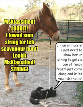 MsKlassified! LOOKIT! I fownd sum  string for teh scavungur hunt! Lookit MsKlassified! STRING!