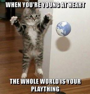 WHEN YOU'RE YOUNG AT HEART  THE WHOLE WORLD IS YOUR PLAYTHING