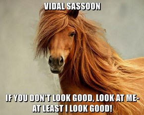 VIDAL SASSOON   IF YOU DON'T LOOK GOOD, LOOK AT ME-                       AT LEAST I LOOK GOOD!