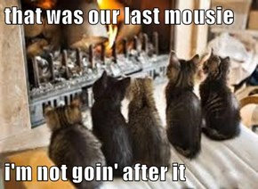 that was our last mousie  i'm not goin' after it