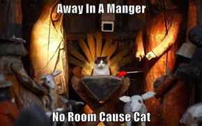 Away In A Manger  No Room Cause Cat