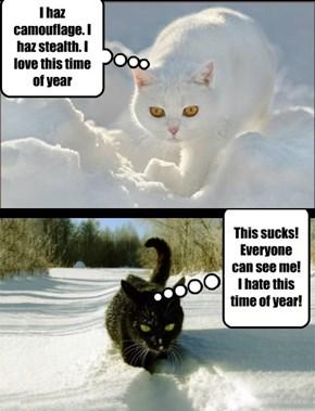 Not everyone like winter