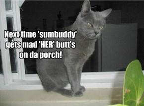 Ai may be da cat, but ai live here too!