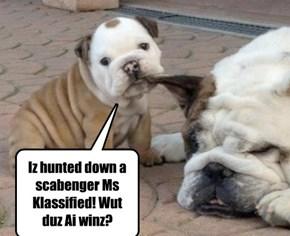 Skolar haz a confuzed about Scabenger Hunt