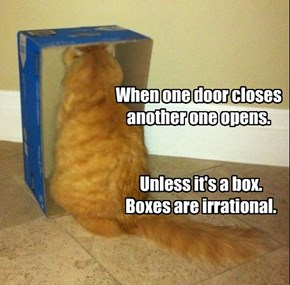 Stoopid boxes!