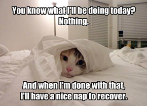 You know what I'll be doing today? Nothing.      And when I'm done with that,  I'll have a nice nap to recover.