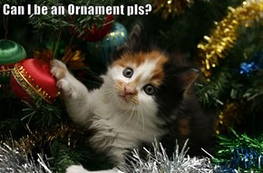Can I be an Ornament pls?