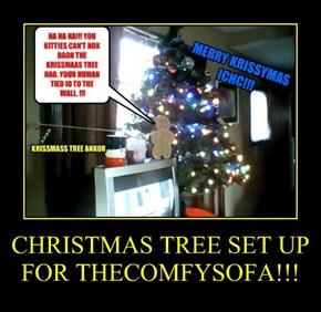 CHRISTMAS TREE SET UP FOR THECOMFYSOFA!!!
