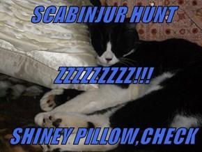SCABINJUR HUNT  ZZZZZZZZZ!!! SHINEY PILLOW,CHECK