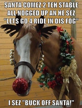 """SANTA COMEZ 2 TEH STABLE ALL NOGGED UP AN HE SEZ """"LETS GO 4 RIDE IN DIS FOG""""  I SEZ """"BUCK OFF SANTA!"""""""