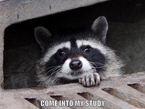 COME INTO MY STUDY