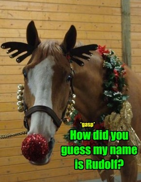 How did you guess my name is Rudolf?