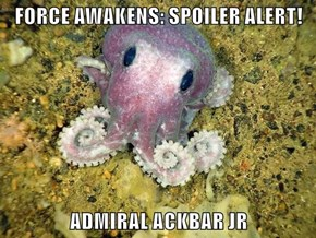 FORCE AWAKENS: SPOILER ALERT!  ADMIRAL ACKBAR JR