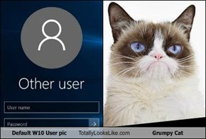 Default W10 User pic Totally Looks Like Grumpy Cat