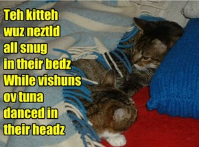 Teh kitteh  wuz neztld  all snug in their bedz While vishuns ov tuna danced in  their headz