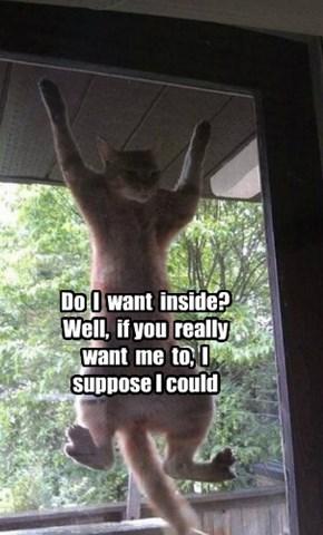 I'm just hanging around