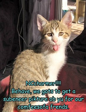 Sorry eberyone.  We did try gettin a gud piktur ob NCcharmer, but she just wouldn' behabe for us.  Maybe next time.