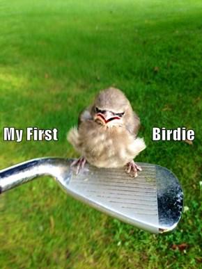 My First                                Birdie