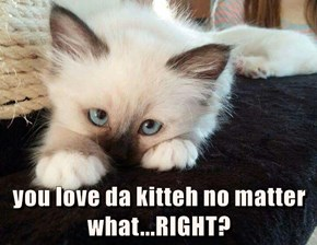 you love da kitteh no matter what...RIGHT?