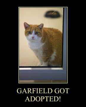 GARFIELD GOT ADOPTED!