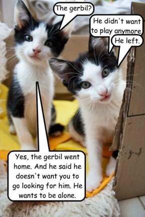 The gerbil?