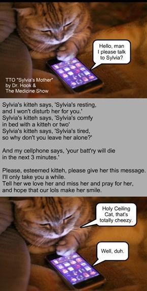 """Sylvia"" (TTO ""Sylvia's Mother"" by Dr. Hook)"