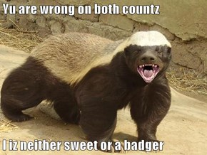 Yu are wrong on both countz  I iz neither sweet or a badger