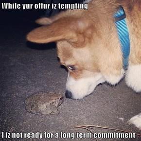 While yur offur iz tempting  I iz not ready for a long term commitment