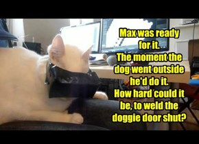 Max was ready  for it. The moment the dog went outside he'd do it. How hard could it be, to weld the doggie door shut?