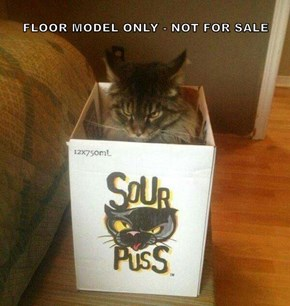 FLOOR MODEL ONLY - NOT FOR SALE
