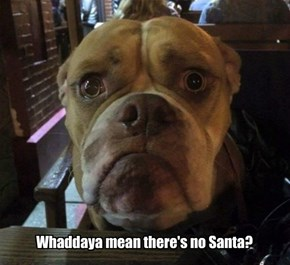 Whaddaya mean there's no Santa?