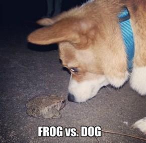 FROG vs. DOG