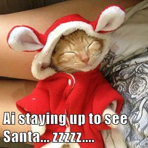 Ai staying up to see Santa... zzzzz....
