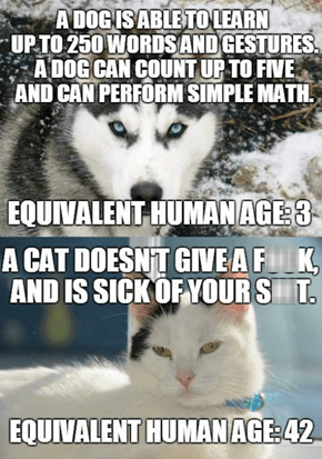 Cat Lovers are More Mature Than Dog Lovers