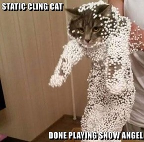 STATIC CLING CAT  DONE PLAYING SNOW ANGEL