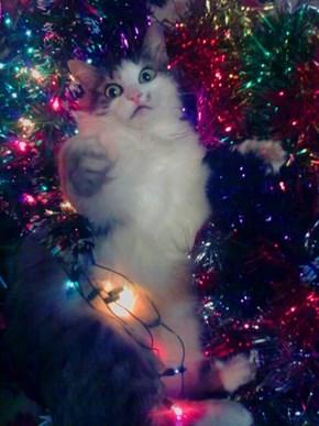 Christmas Got Me Like Whoa