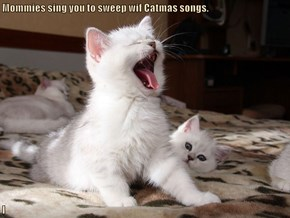 Mommies sing you to sweep wif Catmas songs.  I
