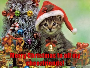 Merry Christmas to all my cheezfriends!