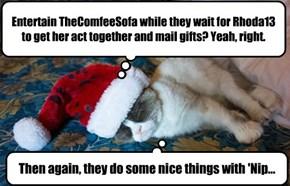 Grumpycat dreams of a green Christmas
