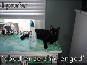 I prefer the term 'obedience challenged'