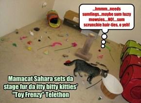 Sahara gets da toy room reddy fur da itty bitties Toy Frenzy Telethon!