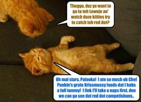 KKPS Catmus Partee 2015: A yung Skolar haz a full tummy!