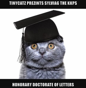 TINYCATZ PREZINTS SYLVIAG THE KKPS  HONORARY DOCTORATE OF LETTERS